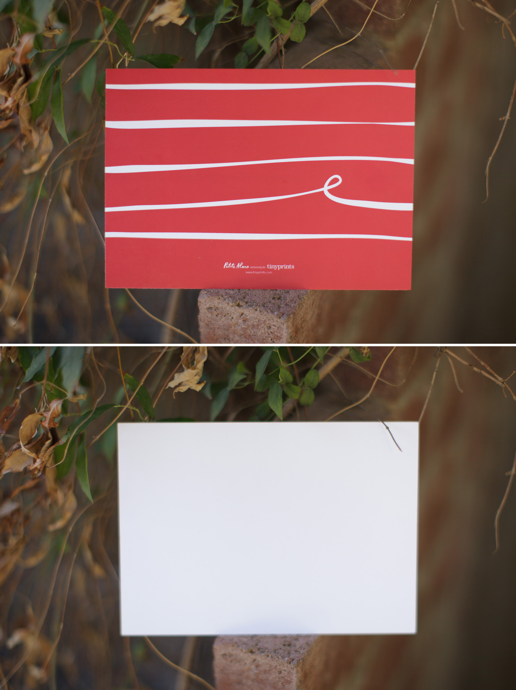 Costco Premium Photo Cards And Tiny Prints Review