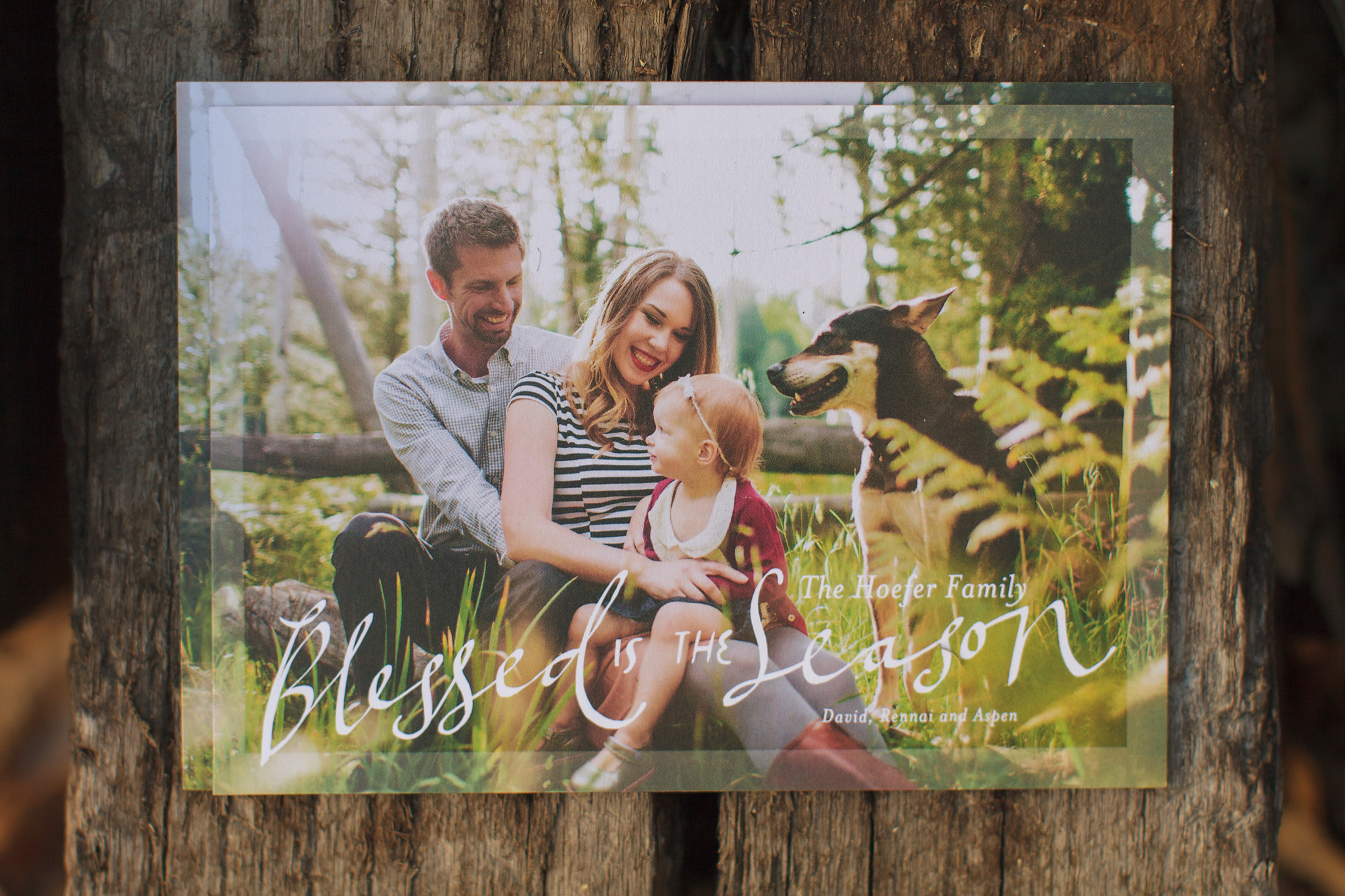 costco vs tiny prints_0009 - Costco Christmas Photo Cards