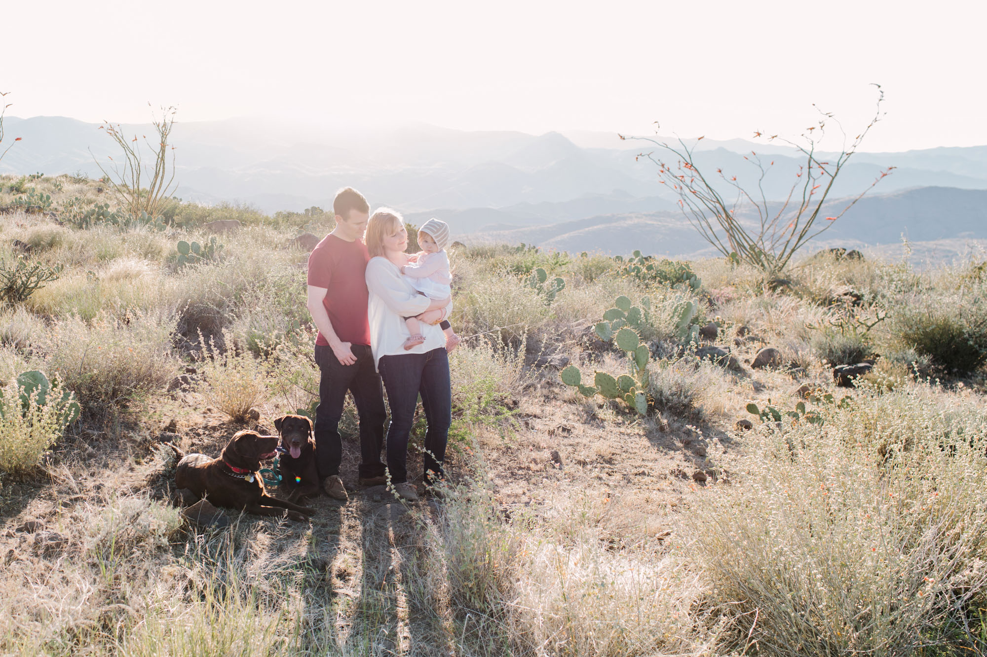 sunset point family lifestyle session ©ten22 studio